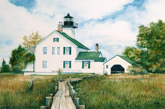 Long Tail Point Watercolor by Thomas A Needham
